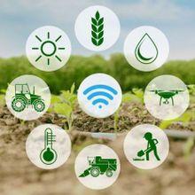 Internet de las cosas en el campo español: IoT en la agricultura